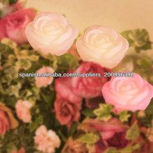 Flor de loto vela titular mayor de la alta calidad