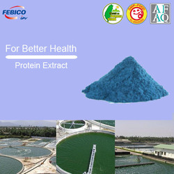 Bulk Raw Materials Microalgae Protein Extract
