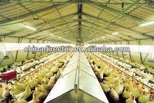 estrutura de aço aves galinheiro