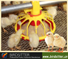 Best chicken poultry livestock feeder system for broiler
