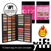 Chinese cosmetics TZ 54colors foundation cream ingredients concealer palette