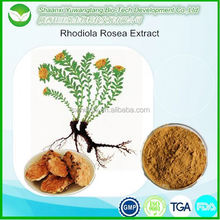 Good Quality Rhodiola Rosea Extract