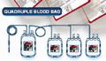 PVC 일회용 쿼드 러플 혈액 가방
