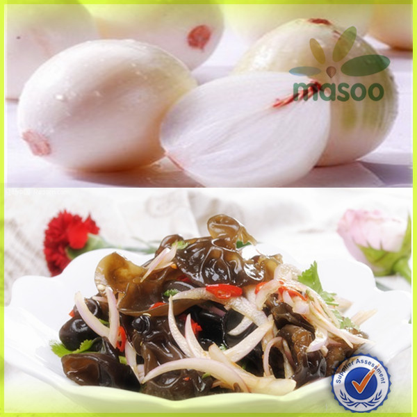 Chinese High Quality Fresh Onion with Low Price / onion storage / types of onion