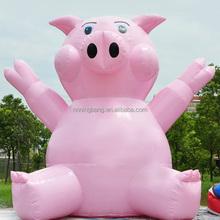 NB-CT1030 Ningbang Hot Sale Giant Inflatable Cartoon for Kids