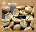 orgánica arábica de café verde