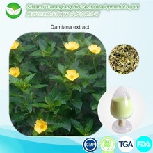 natural high quality Damiana Leaf Extract 10:1 20:1 Damiana