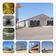 broiler poultry farm equipment