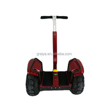 Greia High Power Scooter Best Electric Chariot patrolling Scooter/ Motorcycle