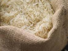 Vietnam white rice best price