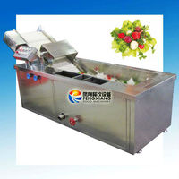 ~Manufacturer~ water bath type CORIANDER CLEANING MACHINE with Ozone (Water Recycle) (100% Stainless Steel) SKYPE: selina84828