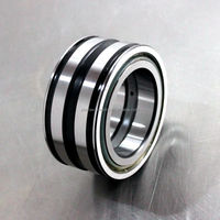 Double Row Full Complement Cylindrical Roller Bearing SL04 5008 2NR Bearing NNF 5008 A 2LSV