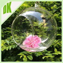 GREAT for displaying your favorite air plants. Get creative and add sand, river stones .... custom hanging lantern glass globe