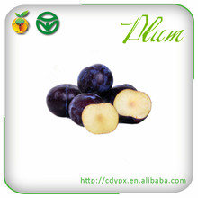 fresh plums black in dark plum color with low price