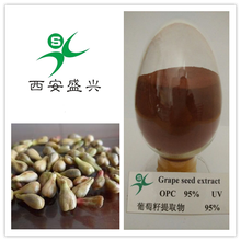 grape seed extract opc with high quality