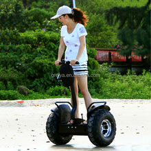 Guangzhou Professional Innovative Two Wheel Electric Scooter for Outdoor