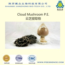 HOT selling Coriolus Mushroom Extract/coriolus versicolor mushroom polysaccharide with GMP Factory bset price