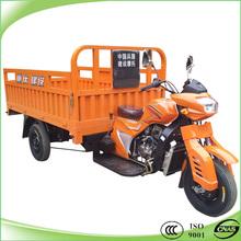 Powerful heavy duty adult tricycle three wheeler