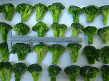 frozen white broccoli