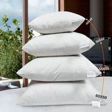 Fashionable Home/Hotel Decorative Duck Feather Cushion