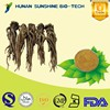 Factory Supply FREE SAMPLE 100% Natural Angelica Extract