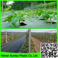 china factory supply black plastic ground cover mesh plant covers