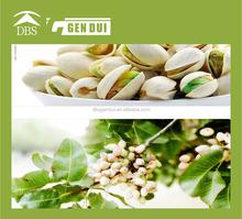 Pistachios pistachio buyers in china pistachio buyers in china
