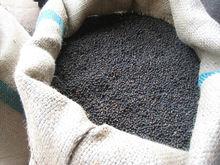 Vietnam black pepper (Skype: gianghuong66)