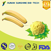 Banana Powder Feed / Banana Powder for Beverage & Health Care Product