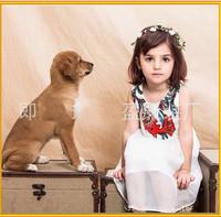 European and american hot sale Ethnic embroidery sleeveless dress girls princess dress children frocks designs