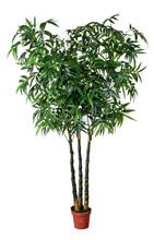 China , venta caliente artificial plantas de bambú para la decoración plantas de bambú para la venta
