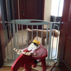 Best Selling Consumer Products Pet Dog Gate children safe dog fence dog gate iron dog door dog fence