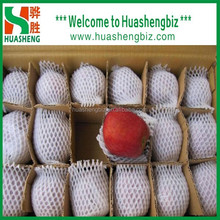 Best Quality Chinese Sweet Huaniu Apples from Huashengbiz