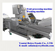 fruits and vegetable washing machine / impurity removing and cleaning machine