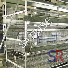 automatic poultry farm equipment/hot galvanized used chicken cages for sale