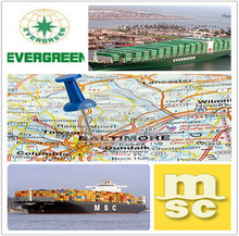 professional container freight forwarder China to JACKSONVILLE USA