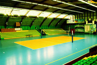 Outdoor Professional PVC Sports Flooring Used for Volleyball