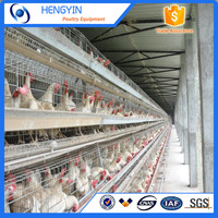 Hot sale new design A type layer egg chicken cage poultry farm house design