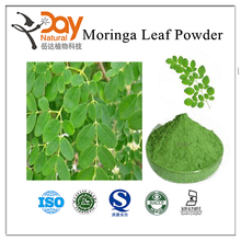 Factory price supply Moringa leaf extract Powder Best friends of mother