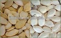 yellow well selected high quality hot sale pumpkin seeds