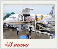 Air freight air cargo for led lights/electronics/Christmas producet from China Shenzhen&Shanghai to PHOENIX - Rita