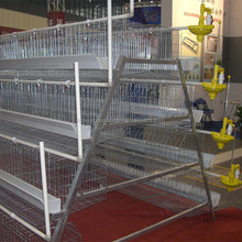 Poultry farm equipment multi-tier chicken cage for sale