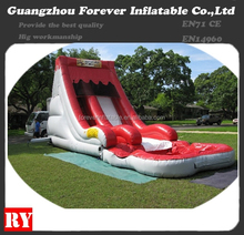 Outdoor Inflatable Red Water Slide