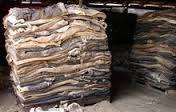 wet salted buffalo hides and donkey hides