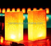 2014 colored luminary candle bags