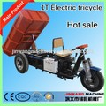 camión minicentral eléctrica de tres ruedas / camioneta de carga convencional