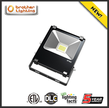 Outdoor IP65 bill board football pitch 10w- 200w 50w led flood light AC85-277V bridgelux chip meanwell driver wholesale price