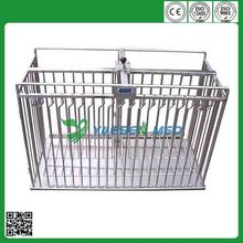 cheap stainless steel veterinary cage for injection