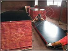 Black /Brown Film MR/WBP Glue Poplar Core Film Faced Plywood