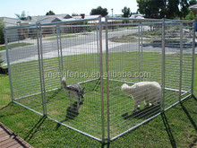 Alibaba best selling high qaulity galvanized dog kennel buildings